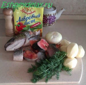 рецепт ухи из семги