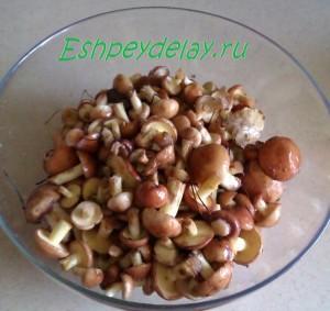 Рецепт вкусных маринованных маслят