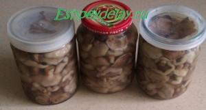 Вкусные маринованные маслята