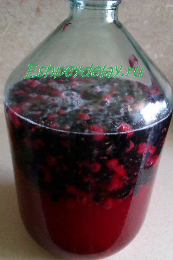 Как сделать вино из черной смородины простой рецепт 168