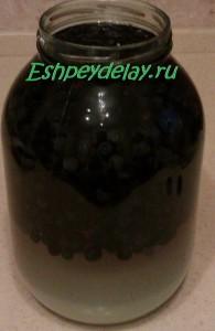 черника в водке с сахаром