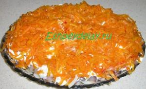 морковный слой салата селедка под шубой