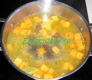 бульен тыквенного супа пюре