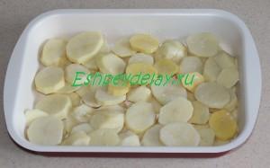 картофель кружочками на листе для запекания
