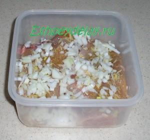 куриные грудки в контейнере с луком