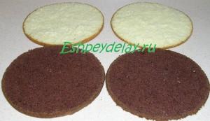 светлые и темные коржи для торта