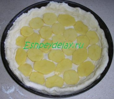 картошка кружочками на тесте