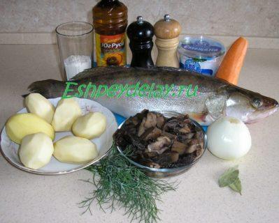 рецепт судака с грибами