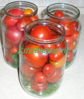 помидоры с зеленью в банке
