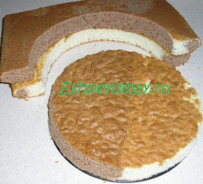 основание торта панчо