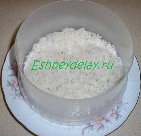 Слой риса